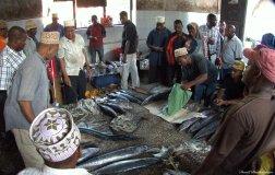 Darajani fish market, Stone Town, Zanzibar. Photo copyright: David Bartholomew