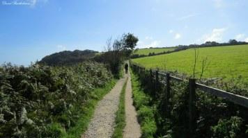 SW Coastal Path, Falmouth, Cornwall. Photo copyright: David Bartholomew