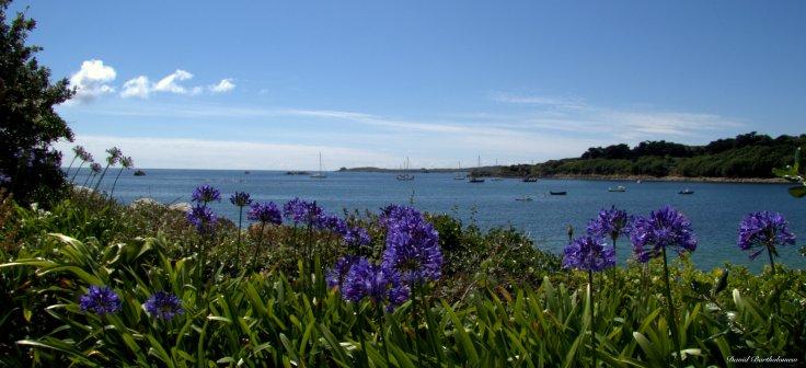 Hugh town, Isles of Scilly, Cornwall. Photo copyright: David Bartholomew