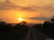 Sunset, Mikumi, Tanzania. Photo copyright: David Bartholomew
