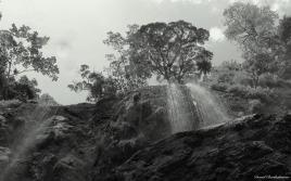 Udzungwa mountains, Tanzania. Photo copyright: David Bartholomew
