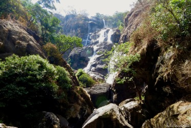 Sanje waterfalls, Udzungwa mountains, Tanzania. Photo copyright: David Bartholomew