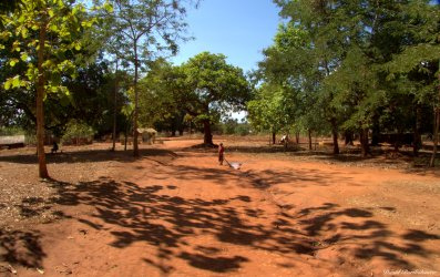 Kichangani, Tanzania. Photo copyright: David Bartholomew