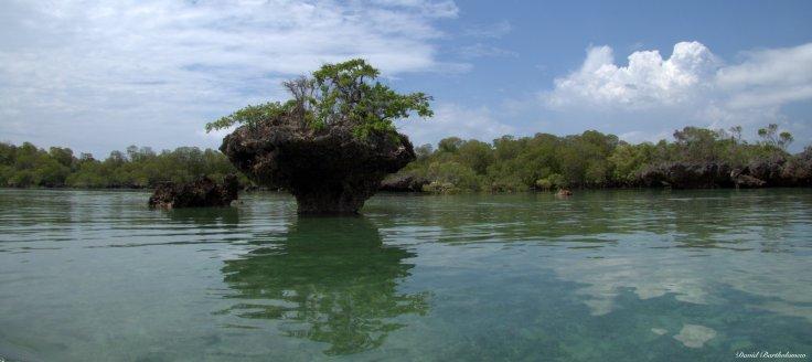 Menai bay, Zanzibar. Photo copyright: David Bartholomew
