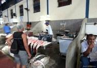 Fish market, ver-o-peso market, Belém, Para, Brazil. Photo copyright: David Bartholomew
