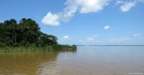 Baía do Melgaço, Para, Brazil. Photo copyright: David Bartholomew