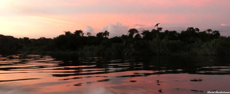 Sunset over Caxiuanã National Forest, Para, Brazil. Photo copyright: David Bartholomew