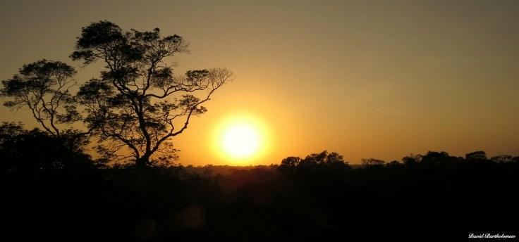 Sunrise over Caxiuanã National Forest, Para, Brazil. Photo copyright: David Bartholomew