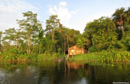 Amazonian house, Para, Brazil. Photo copyright: David Bartholomew