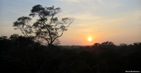 Sunrise over the Caxiuanã National Forest, Para, Brazil. Photo copyright: David Bartholomew