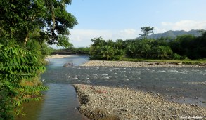 Bohorok river. Photo copyright: David Bartholomew