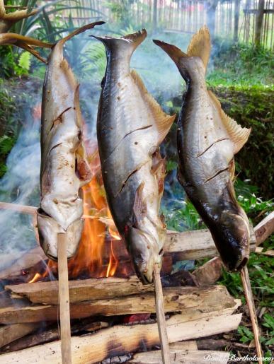Catfish barbecue. Photo copyright: David Bartholomew