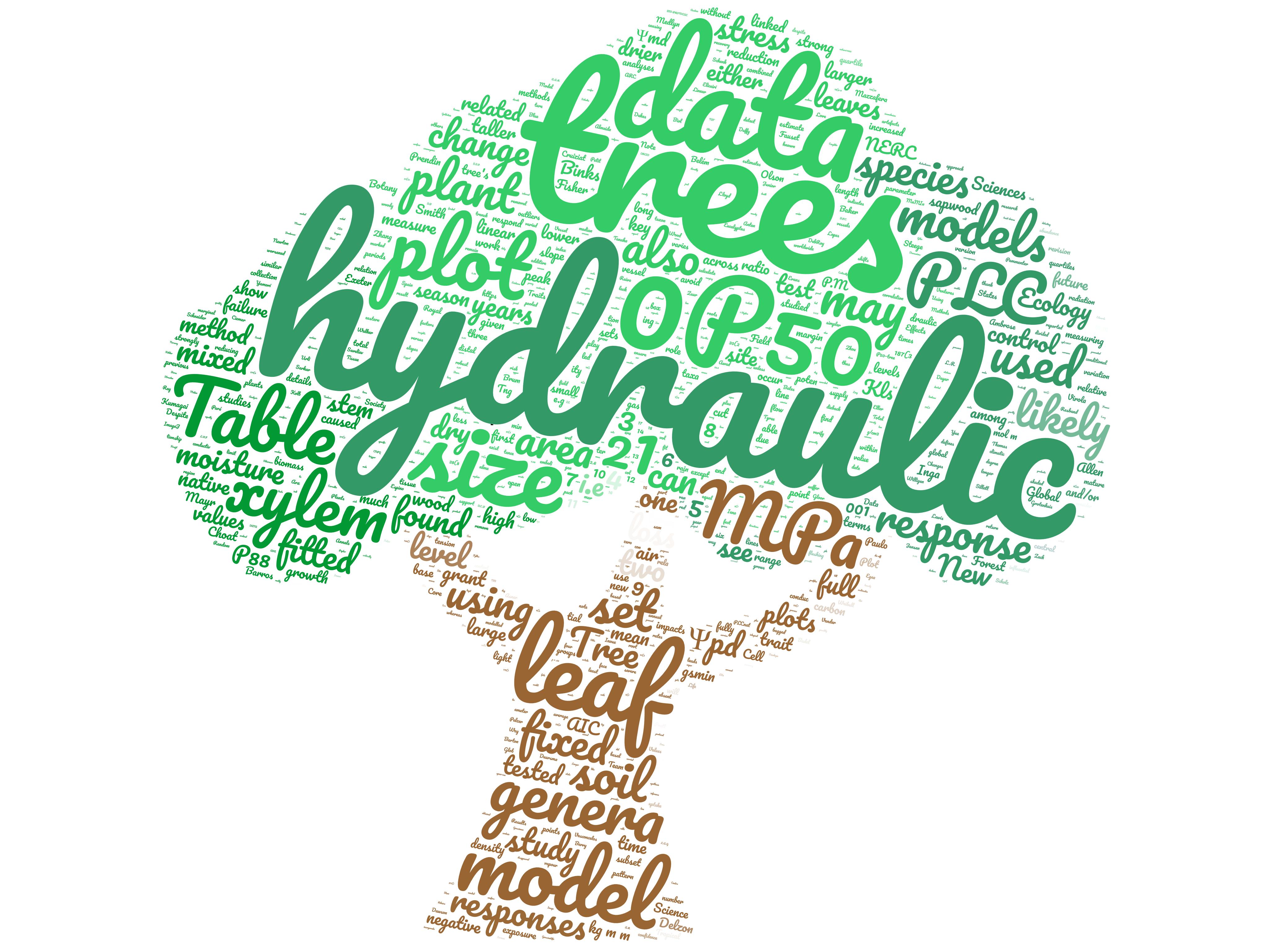 Bittencourt et al. 2020 GCB wordcloud